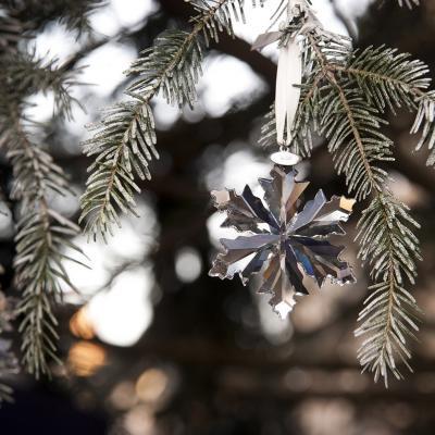 03DICIEMBRE2015 Chábeli Iglesias amadrina el encendido del árbol de Navidad de Swarovski.