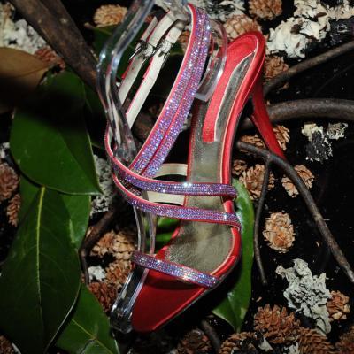 27SEPTIEMBRE2012 La marca de zapatos, Serena Whitehaven, se presenta en sociedad. Foto: Montse Carreño.