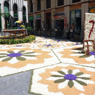 09MAYO2012  Fiesta del Corpus en Sitges, donde el acto principal son las alfombras de claveles. Foto: Montse Carreño.