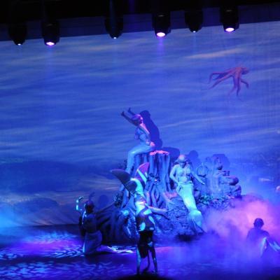23DICIEMBRE2012 Fotograma de Peter Pan El Musical. Foto: Manel Martin.
