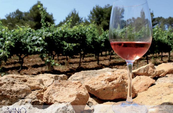 Formentera en una botella de vino